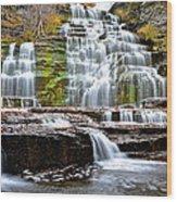 Hector Falls Wood Print