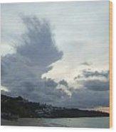 Hedgehog Cloud Wood Print