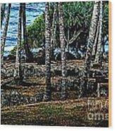 Heiau Wailua River Wood Print