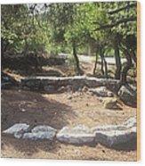Helicoidal Ore Plant Wood Print