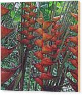 Heliconia Haven Wood Print