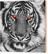 Hell Cat Wood Print