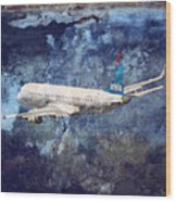 Hell Of A Flight Wood Print