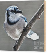 Hello Blue Wood Print