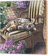 Hello From A Kitty Wood Print by Regina Femrite