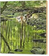 Hells Run Reflections Wood Print by Adam Jewell