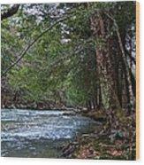 Hemlock Creek Edge Wood Print