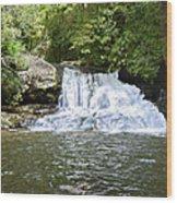 Hemlock Falls Wood Print by Susan Leggett
