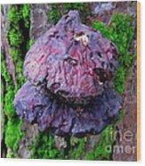 Hemlock Reishi Wood Print