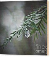 Hemlock Tears Wood Print