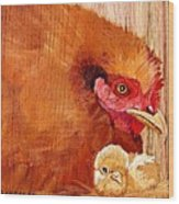 Hen With Chick On Wood Wood Print