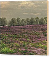 Henbit Up To The Bradfords Wood Print