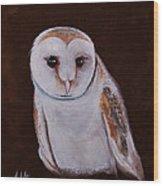 Henry The Owl Wood Print