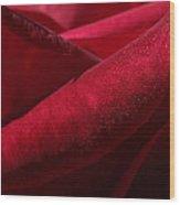 Her Crimson Robe Wood Print