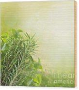 Herbs With Copyspace Wood Print