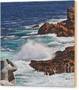 Hercules On The Argonauts Ship Wood Print