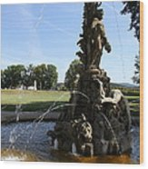 Hercules Sculpture Water Fountain  Wood Print