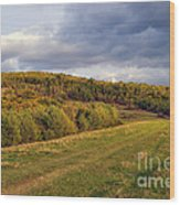 Here Hear The Earth Breathing Wood Print