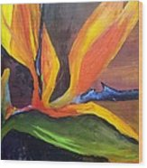 Here I Am Bird of Paradise Wood Print
