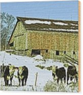 Hereford Barn Painting Wood Print