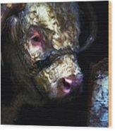Hereford Bull 2 Wood Print
