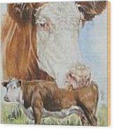 Hereford Cattle Wood Print