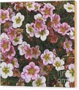 Here's Flowers For You Wood Print