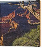 Hermit Rest Grand Canyon National Park Wood Print
