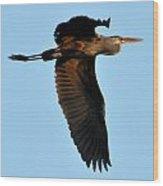 Heron 249a Wood Print
