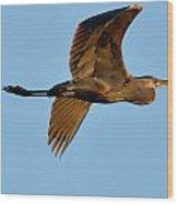 Heron 250a Wood Print