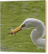 Heron And Dragonfly Wood Print