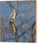 Heron And Reflection In Jekyll Island's Marsh Wood Print by Bruce Gourley