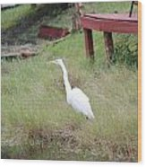 Heron And The Canal Wood Print