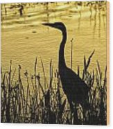 Heron At Sunrise Wood Print