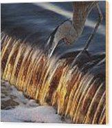Heron Fishing At The Weir Wood Print