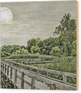 Heron Haven Boardwalk Wood Print