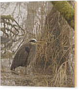 Heron In A Fog Wood Print