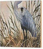 Heron In Tall Grass Wood Print