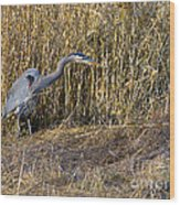 Heron In The Grass Wood Print