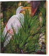Heron In The Pines Wood Print