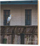 Heron In The Window Wood Print
