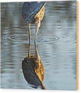Heron Looking At Its Own Reflection Wood Print