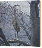 Heron Looking Out Wood Print