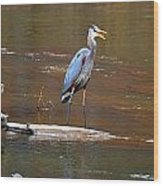Heron On The Creek Wood Print