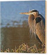 Heron On The Lake Wood Print