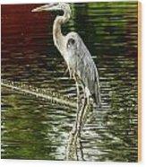Heron On The Stick Wood Print