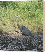 Heron Travels  Wood Print