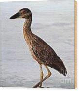 Heron Under The Dock Wood Print