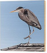 Heron Up On The Roof Wood Print
