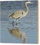 Heron Walking Through The Water. Wood Print